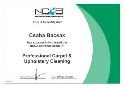 C.Bacsak certificate coursejpg -1 (1)